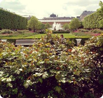 jardin-royal-paris