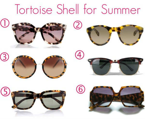 Tortoise-shell-for-summer