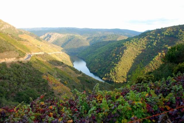 Cañones de Sil, Galicia