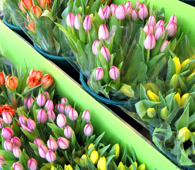 Little Luxuries : Fresh Flowers //  A Beautiful Journey